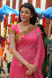 Kajal Aggarwal Hot Saree Photo
