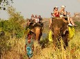 tour-packaes-in-kerala - photo8