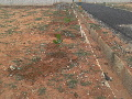 biaapa-approved-sites-before-airport-road