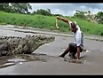 foolish feeding to crocodile video videos