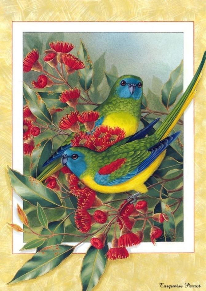 beautiful birds paintings 11
