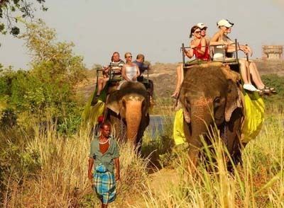tour packaes in kerala-photo8
